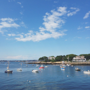 Fine and Feathered // Easternpoint Gloucester, MA