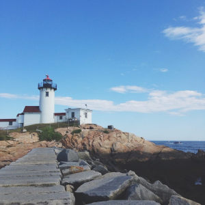 Fine and Feathered // Eastern Point - Gloucester, MA